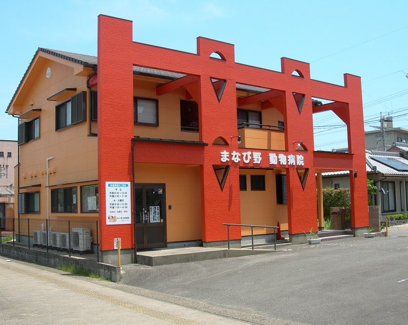 manabino animal hospital